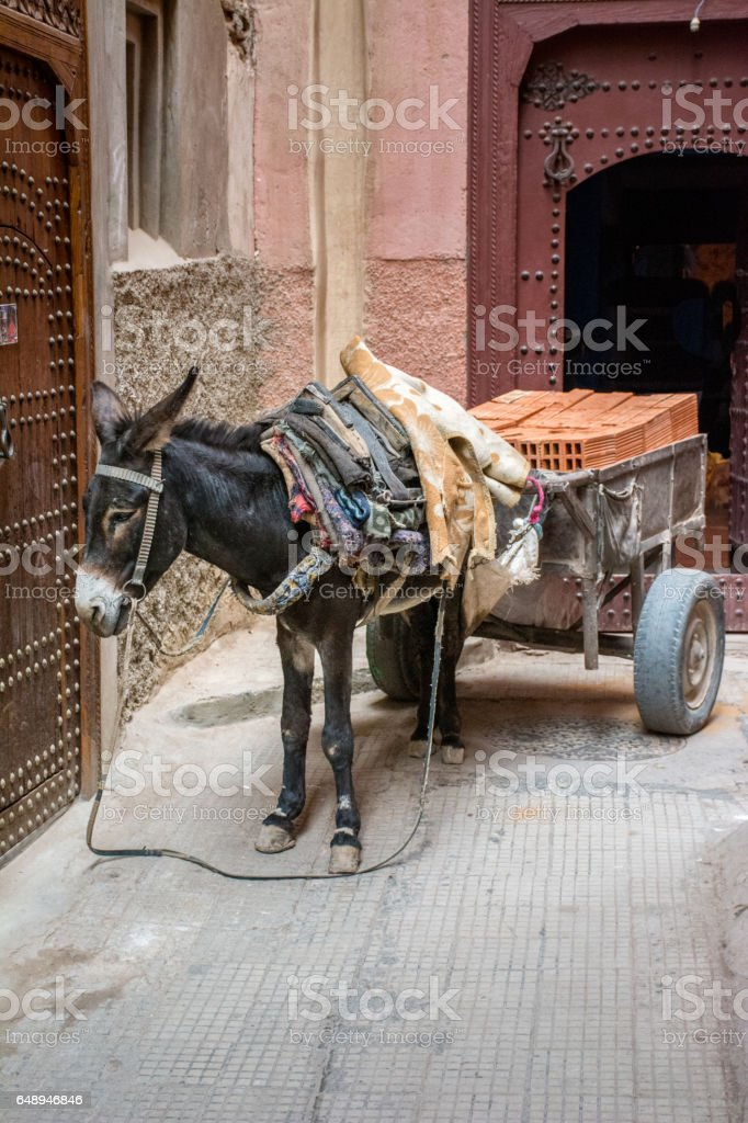 Donkey With a Load of Terracotta Blocks stock photo