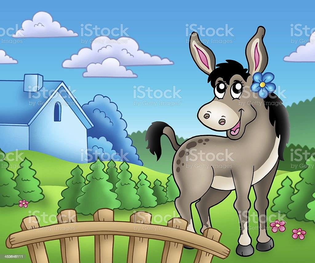 Donkey with flower behind fence royalty-free stock photo
