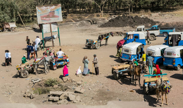 donkey-carts and taxis on the side of the road - horn of africa stock photos and pictures