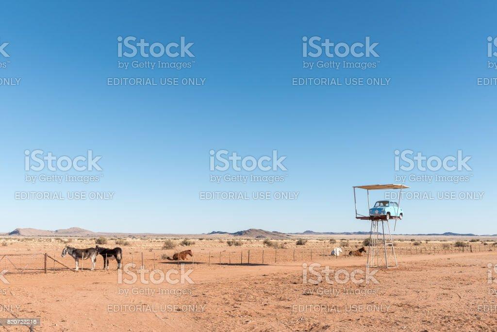 Donkeys, three horses and vintage car next to the N14 stock photo