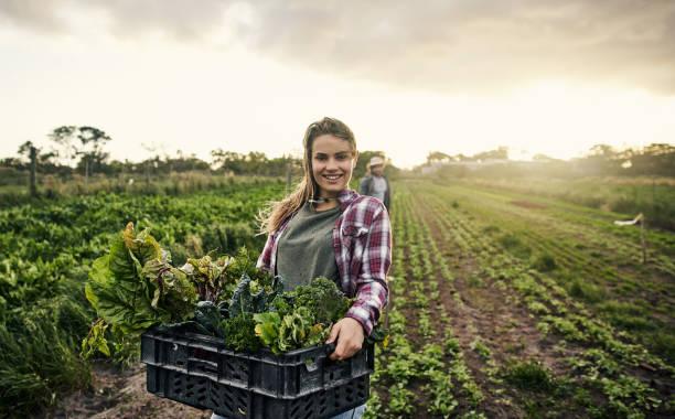 Vergessen Sie nicht, Ihre lokalen Bio-Landwirt unterstützen – Foto