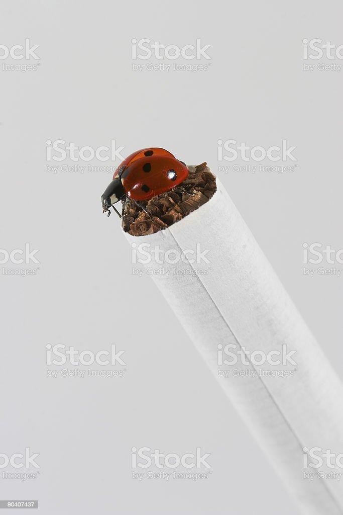 Don't smoke 02 stock photo