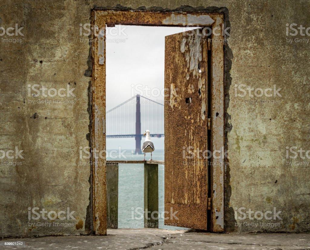 Door, Bird, Bridge stock photo