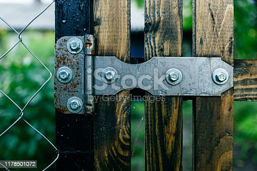 istock Door hinge on the hedge, hinges for the background 1178501072