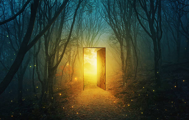 Door in forest A magical door in the forest with bright glowing lights. dreamlike stock pictures, royalty-free photos & images