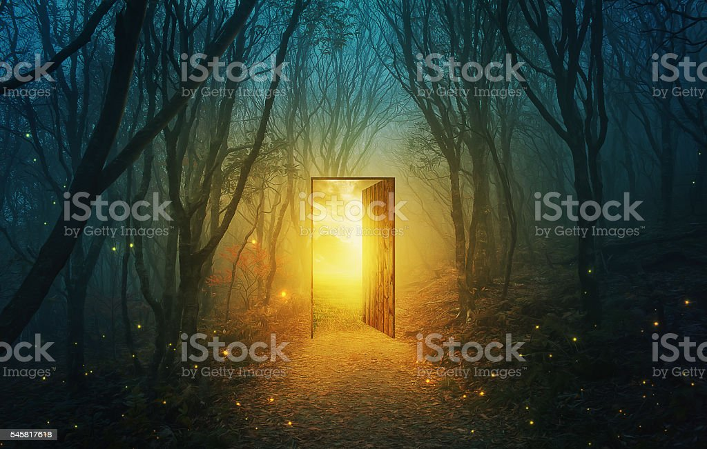 Door in forest stock photo