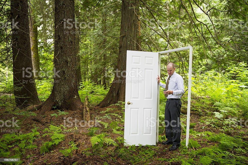 Door in the Forest stock photo