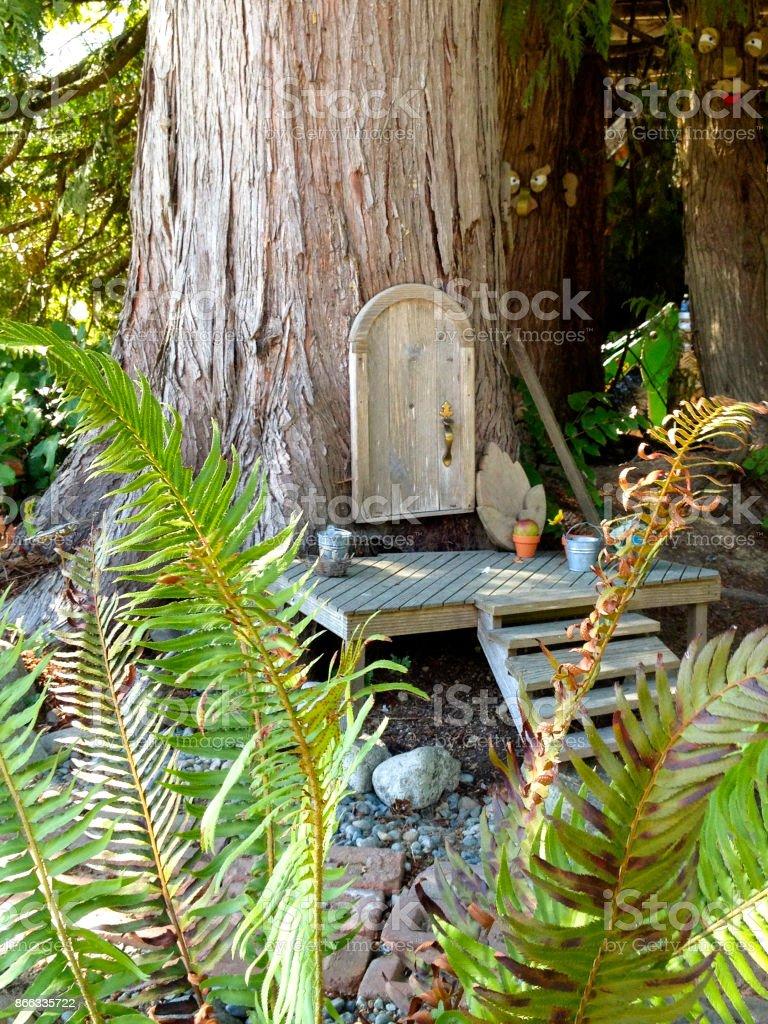 Door in Tree stock photo