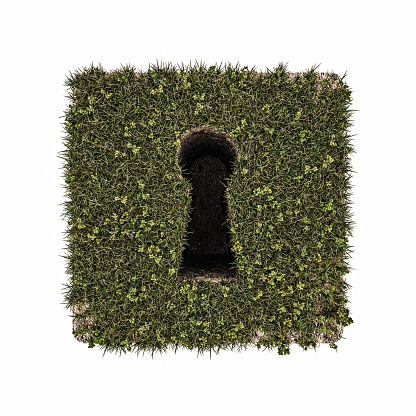 door look on grass isolated on white background
