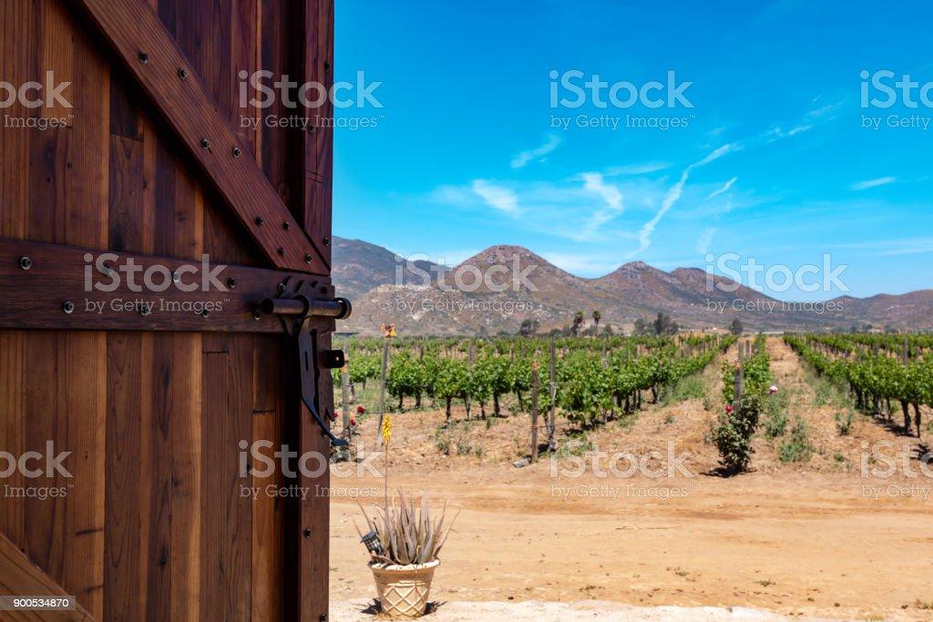 Apertura de la puerta para Viña en Baja California - foto de stock