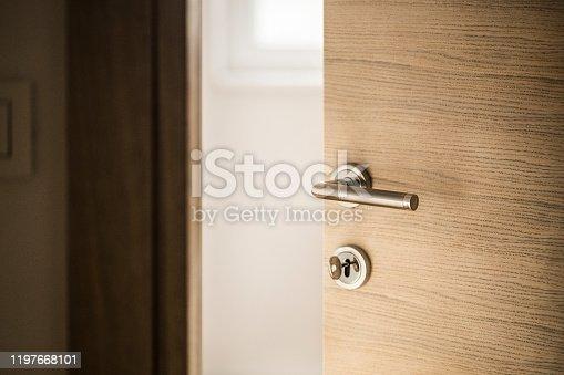 istock Door 1197668101