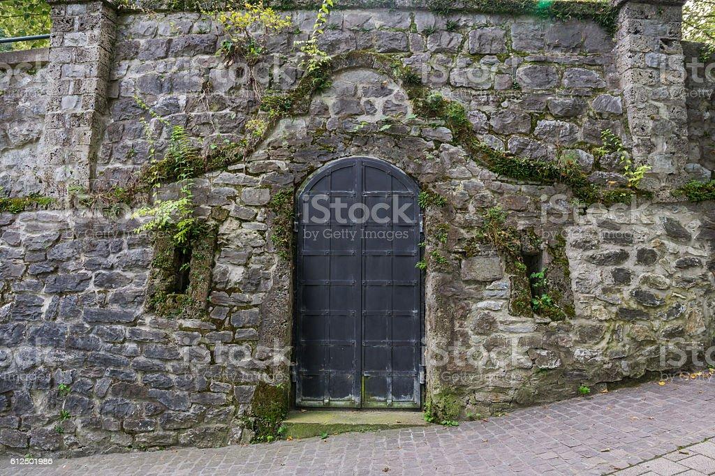 Door. stock photo