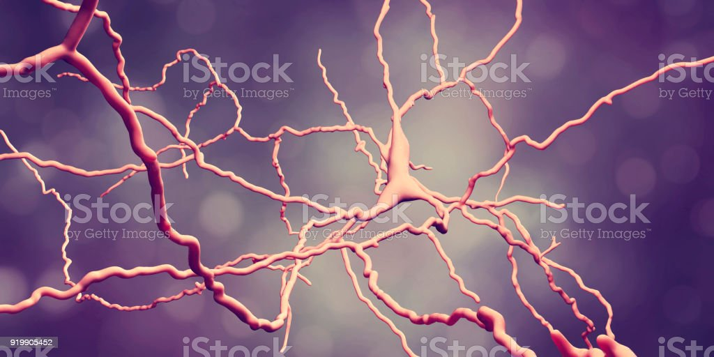 Dopaminergic neuron. Degeneration of this brain cells are responsible for development of Parkinson's disease stock photo