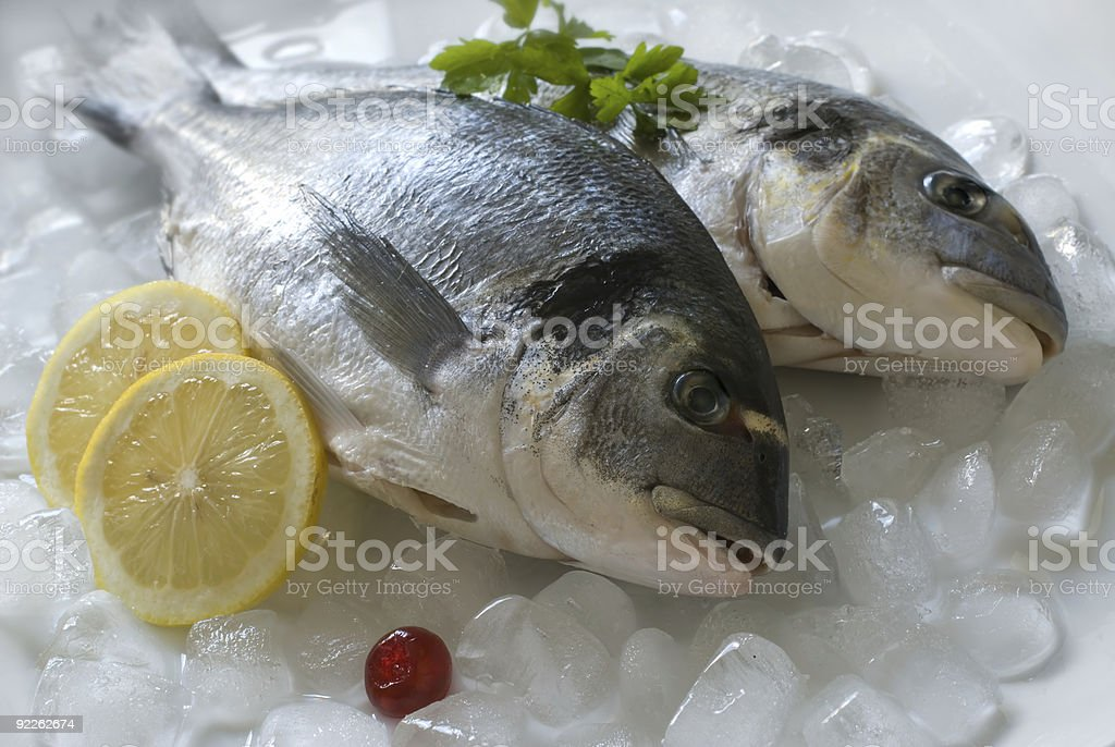 Dorade fish on ice with two lemon slices royalty-free stock photo