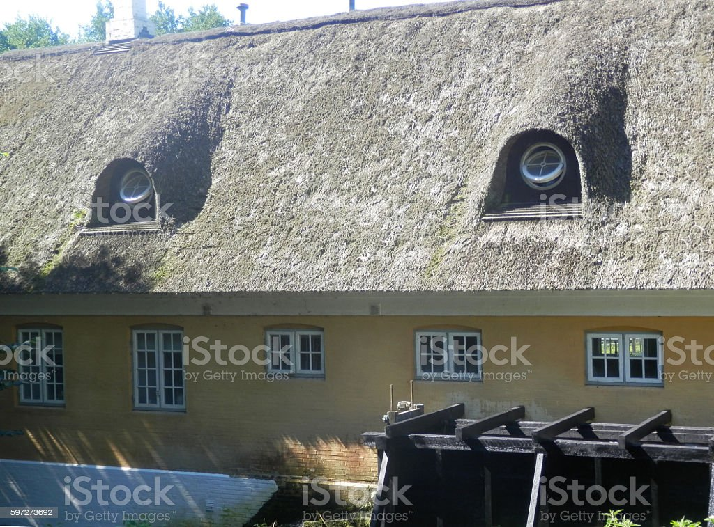 Dormer windows under Thatch Lizenzfreies stock-foto
