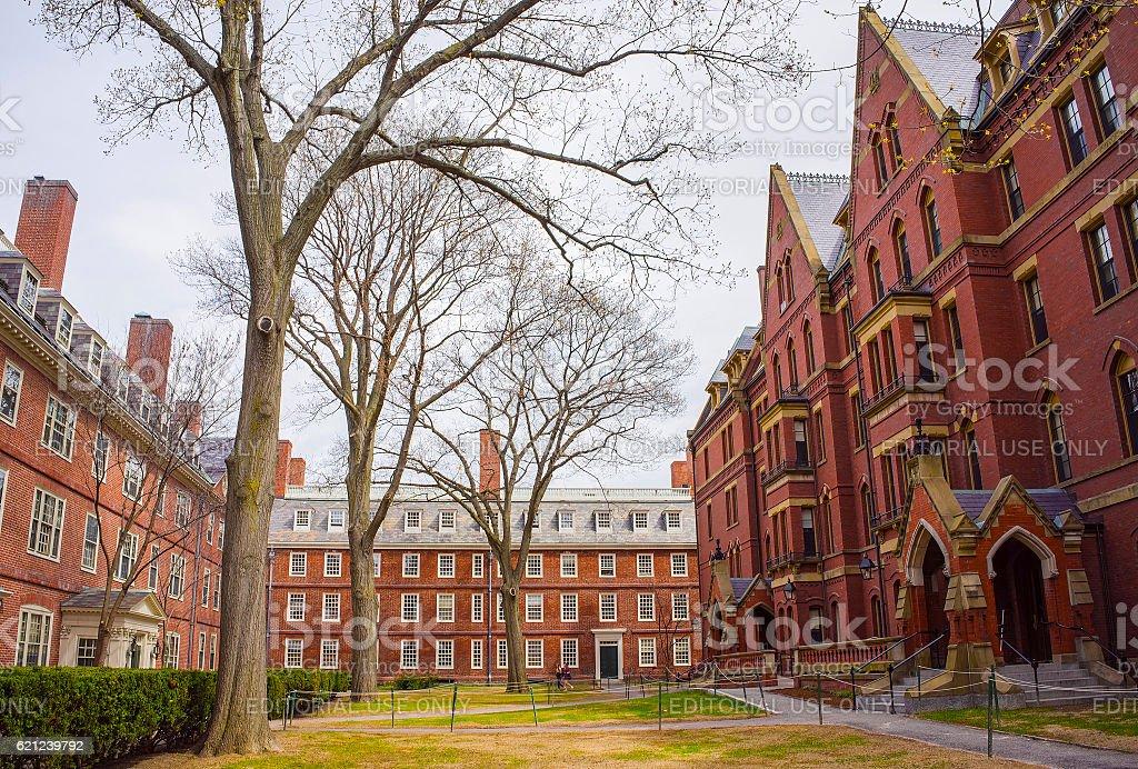 Dormitories and Harvard Computer Society in Harvard Yard stock photo