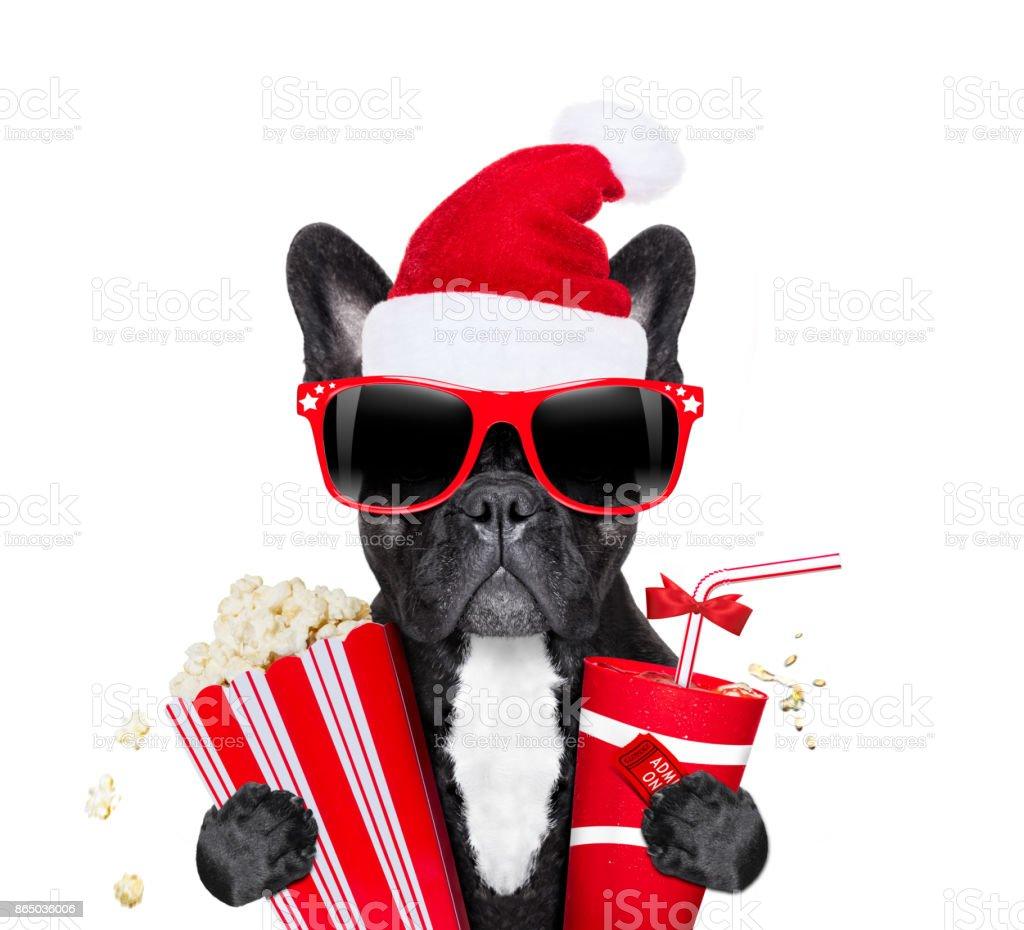 dot at the movies  on christmas holidays stock photo
