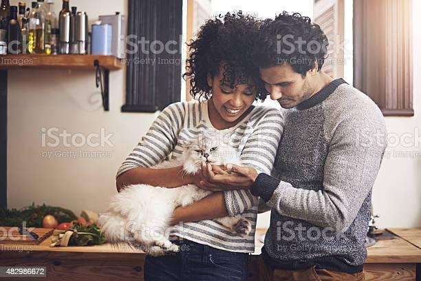 Doting on their furry friend picture id482986672?b=1&k=6&m=482986672&s=612x612&h=ebqc1mr wvs3j22r 36cdfgk trcnwxjdft9ybwip30=