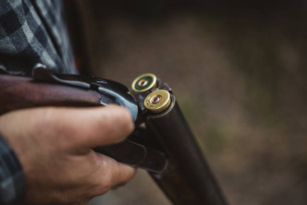 Double barrelled shot gun Male hunter in the woods ammunition stock pictures, royalty-free photos & images