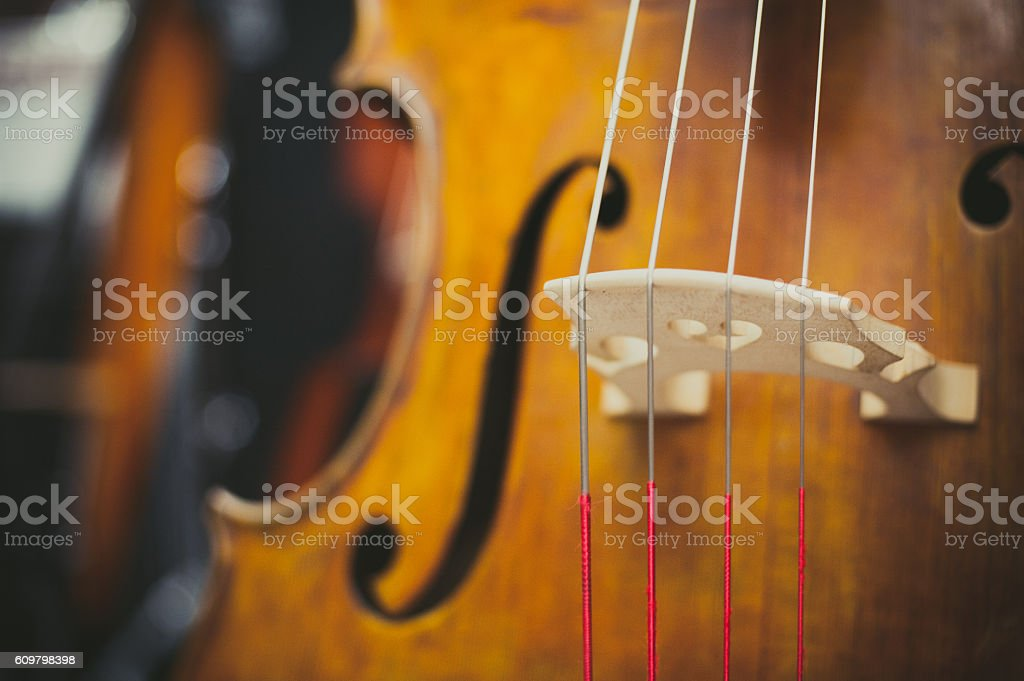 Double bass bridge and string close up stock photo