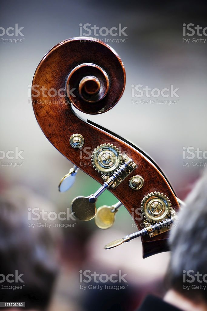 Double Bass In Orchestra stock photo