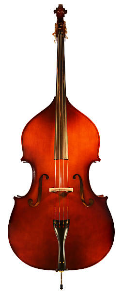 XXXXL Double Bass Isolated with Path stock photo