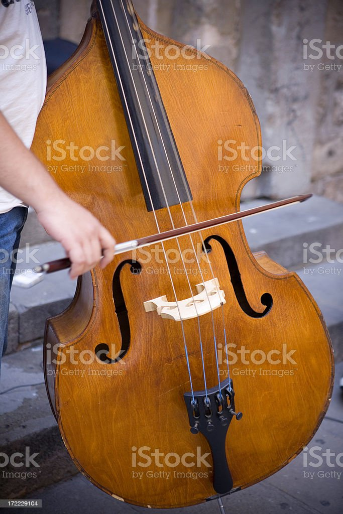 Double bass royalty-free stock photo