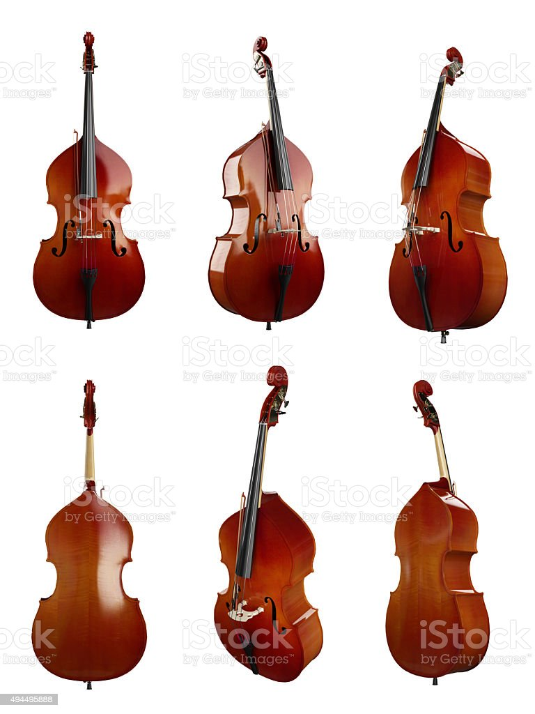 Double Bass (XXXXXL) stock photo