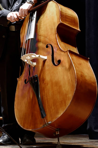 double bass player at a classical music concert stock photo
