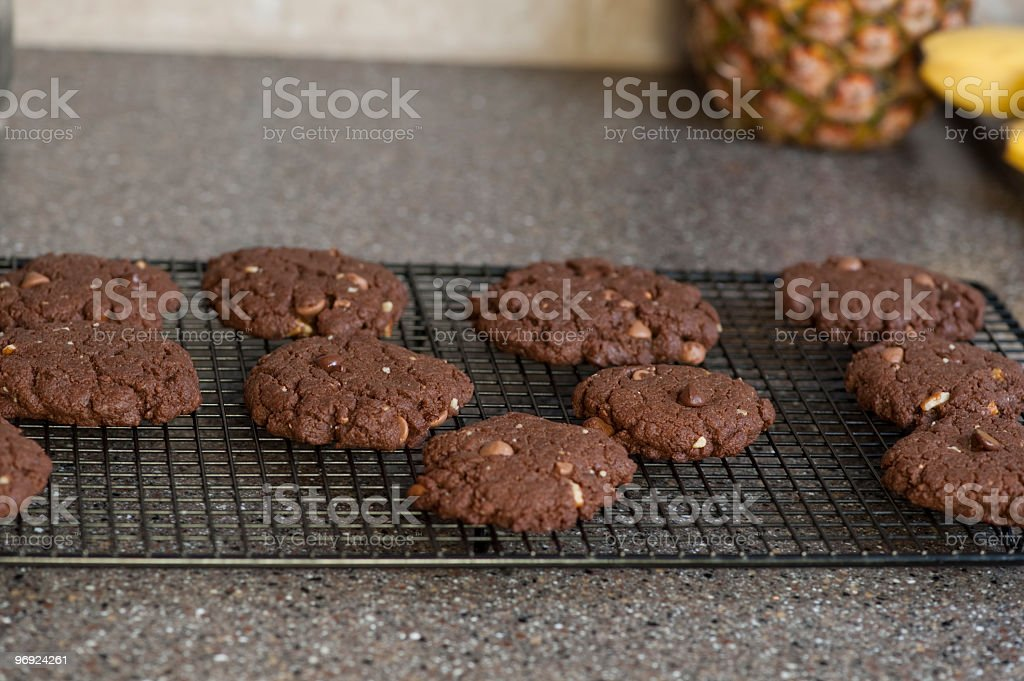 Double chocolate chips cookies cooling royalty-free stock photo