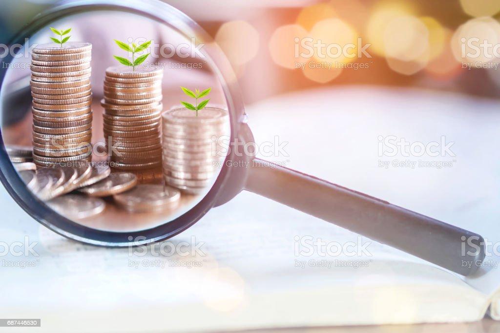 Doppelbelichtung Geschäftskonzept mit Lupe Fokus auf Baum wächst auf Münzen – Foto