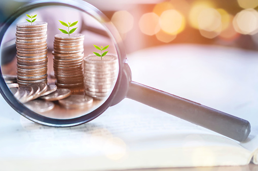 Double Exposure Business Concept With Magnifying Glass Focus On Tree Growing On Coins Stock Photo - Download Image Now