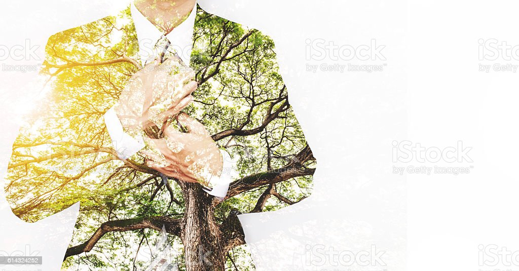 Double Exposure Businessman in Suit with Big Tree – Foto