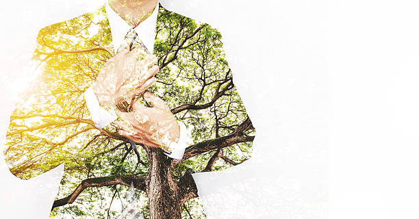 Double Exposure Businessman in Suit with Big Tree - Photo
