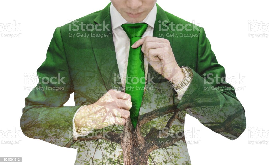 1c457898a28a5 Double Exposure Businessman tying green necktie and big tree - Stock image .
