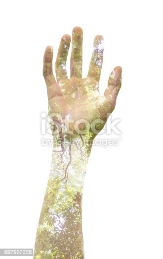 istock Double exposure of a hand and a tree, representing the power to speak up and stop what is contrary to personal opinion 697967228