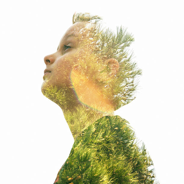 Double exposure of a young boy and pine tree stock photo