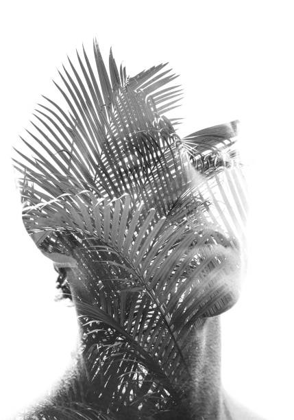 Double exposure of a young sexy man's portrait blended with branches of a tropical palm tree, showing the perfect beauty of nature's creation in black and white stock photo