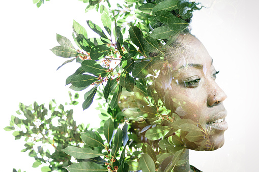 Double exposure portrait of attractive african american woman combined with photograph of leaves