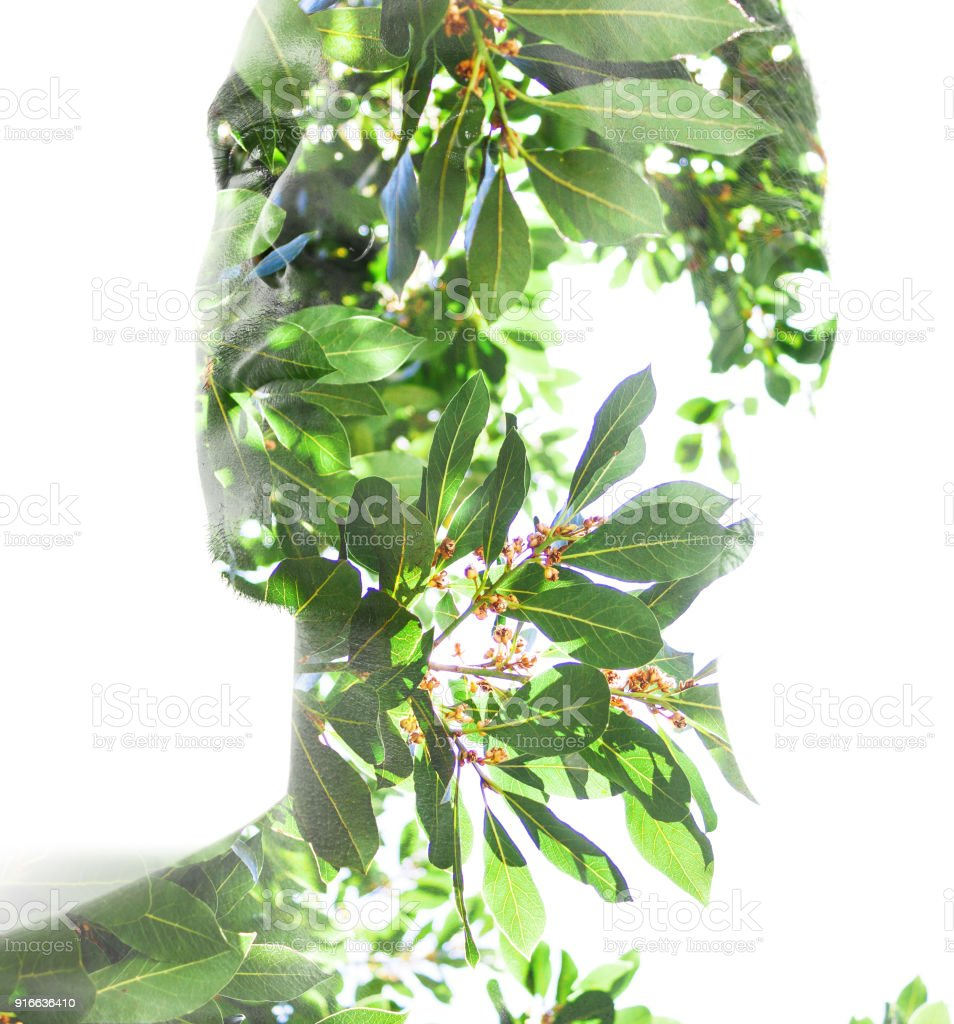 Double exposure, profile of a young man blended with lush tropical leaves shows the perfect beauty of nature's creation, mimicking a face mask stock photo