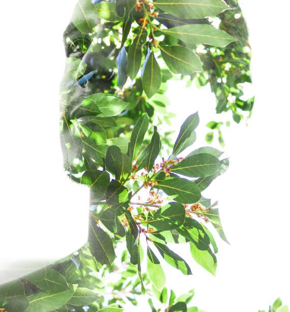 dubbel exponering, profil av en ung man som blandas med frodiga tropiska löv visar den perfekta skönheten av naturens skapelse, härma en ansiktsmask - earth from space bildbanksfoton och bilder