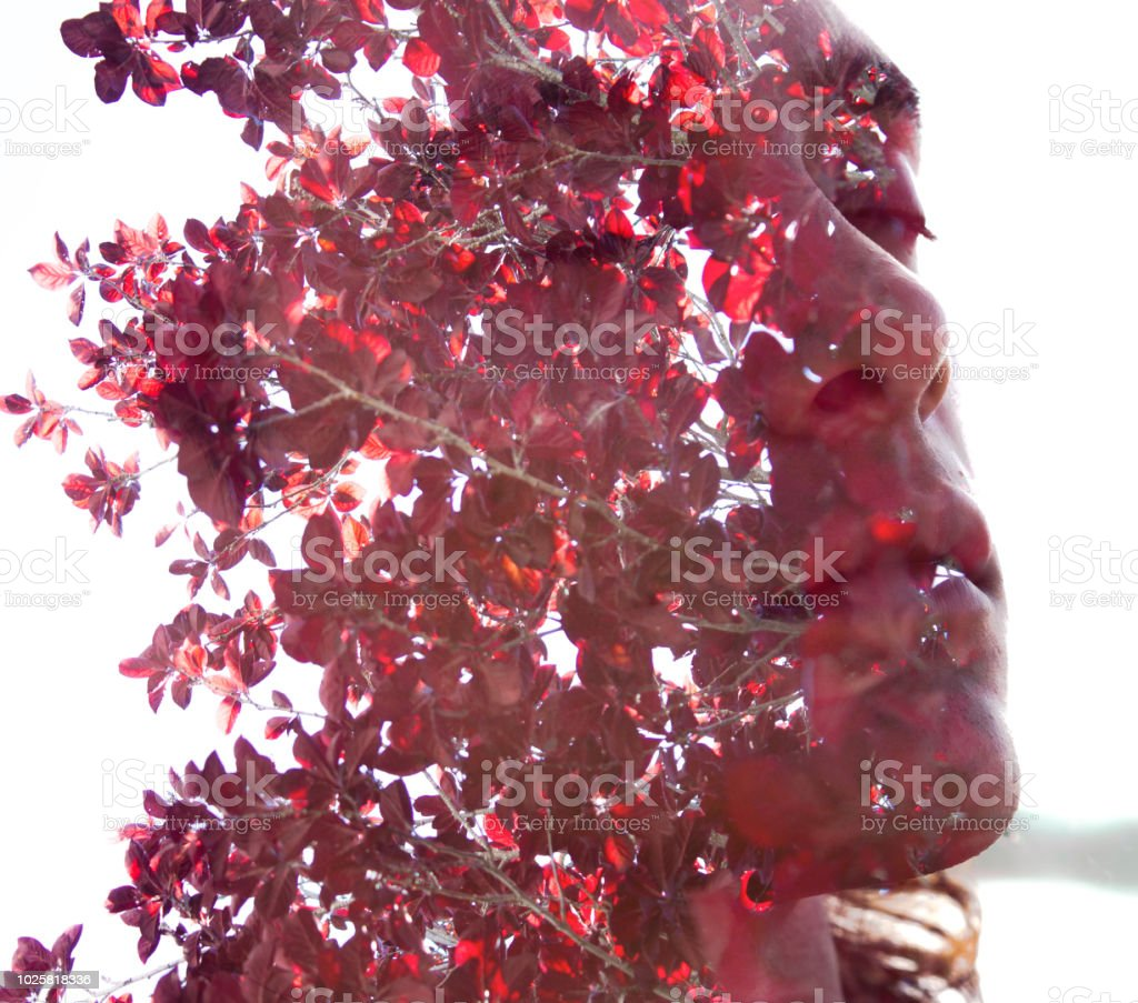 Double exposure, profile of a young sexy man blended with red autumn leaves shows the perfect beauty of nature's creation, mimicking a face mask stock photo
