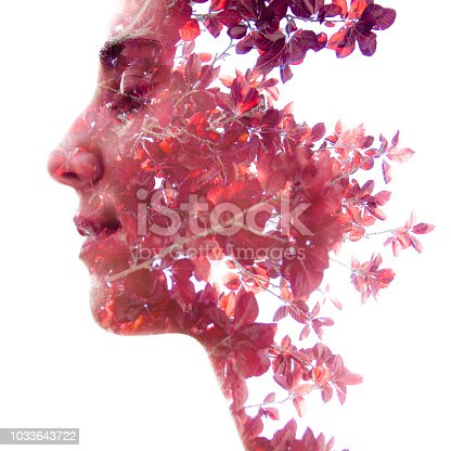 istock Double exposure profile portrait of a beautiful girl combined with natural elements creating an unusual effect where her face disappears behind red autumn leaves 1033643722