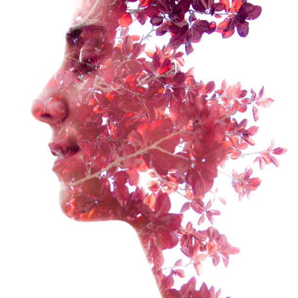 Double exposure profile portrait of a beautiful girl combined with natural elements creating an unusual effect where her face disappears behind red autumn leaves stock photo