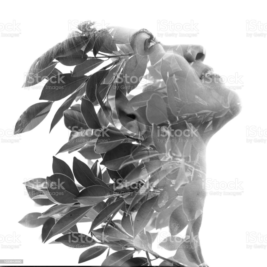 Double exposure profile portrait of a naturally beautiful woman and tropical leaves, black and white stock photo
