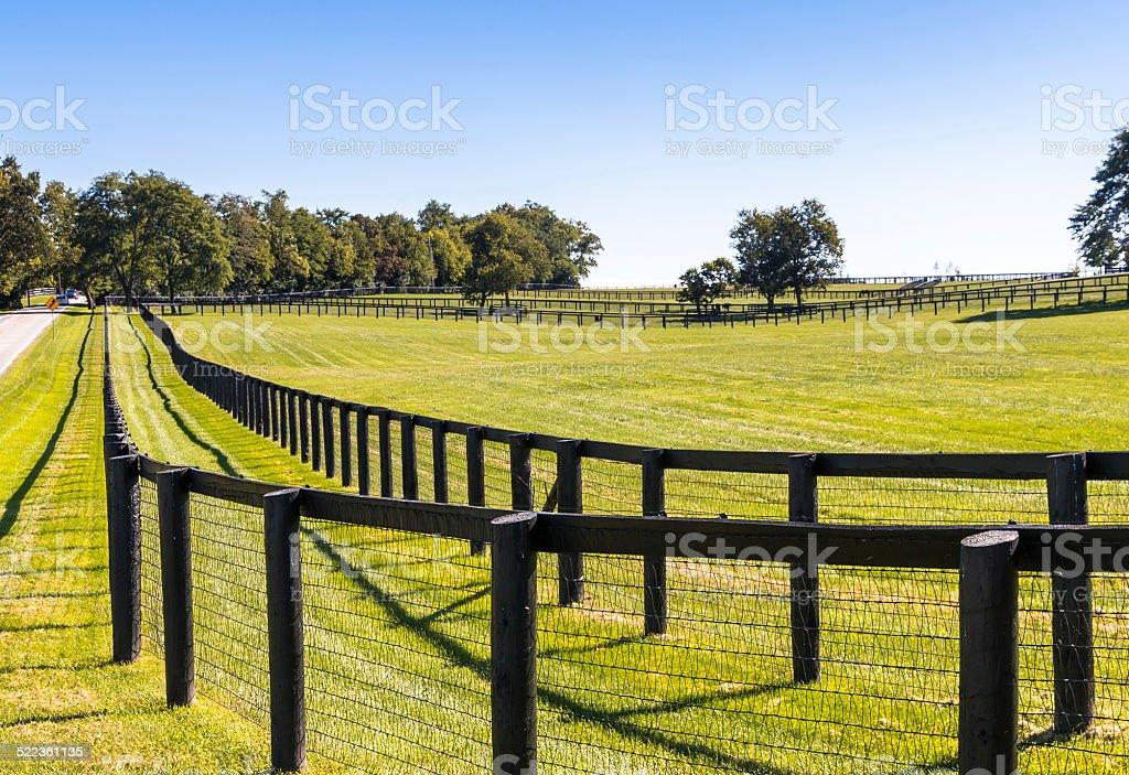 Mit Zaun auf horse farm. – Foto