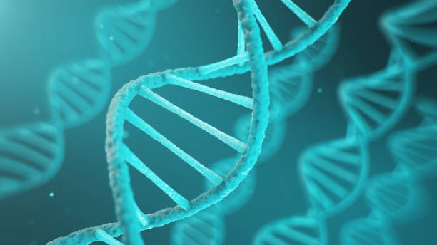 Double helical structure of DNA, DNA molecule, RNA. The concept of biochemistry, biotechnology. Genome change, 3D illustration stock photo