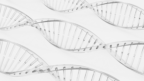Dna Double Helix Models Stock Photo - Download Image Now