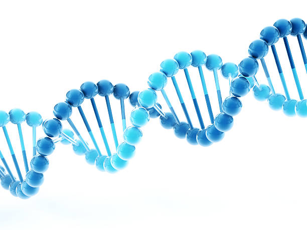 DNA Double Helix Molecular Structure 3D Render of a blue simplified DNA Double Helix molecular structure. Depth of field effect. Very high resolution available! Use it for Your own composings! abstract 3d stock pictures, royalty-free photos & images