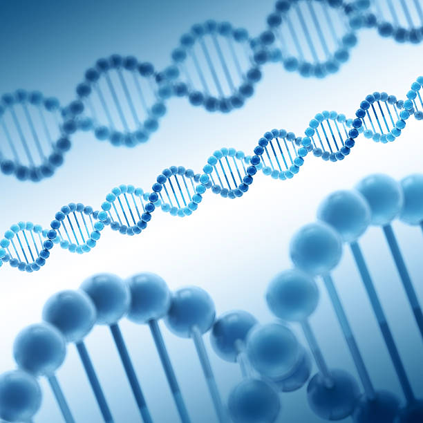 DNA Double Helix Molecule Blue 3D Render of some simplified DNA molecular structures. Depth of field effect. Very high resolution available! Use it for Your own composings!Related images: molecule 3d stock pictures, royalty-free photos & images